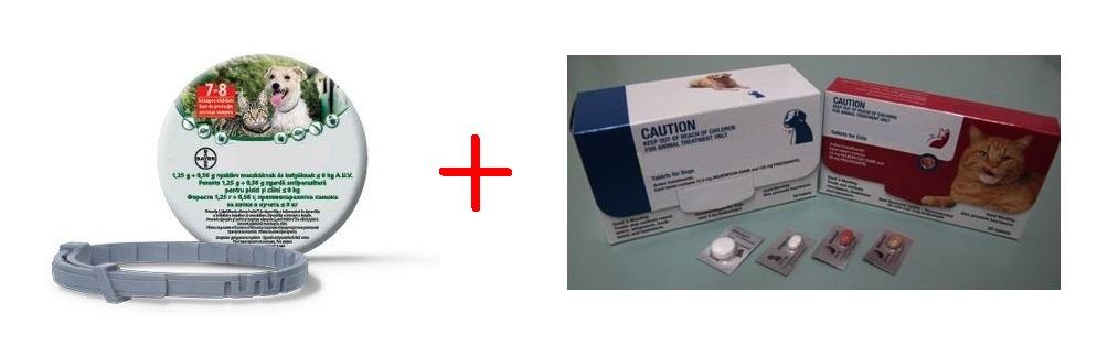 szivfergesseg gyógyszer